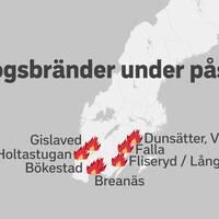 Flera skogsbränder har brutit ut i stora delar av södra Sverige under påskhelgen. Fler bränder har tillkommit under dagen.