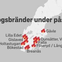 Flera skogsbränder har brutit ut i stora delar av södra Sverige under påskhelgen.