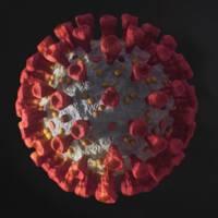 Grafiska bilder på koronavirus i förstoring.