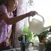 En kvinna vattnar blommorna.
