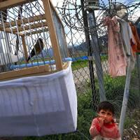 Ett flyktingbarn med en fågelbur i ett läger i Turkiet.