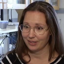 Råtta på bild och forskaren Tanja Strand.