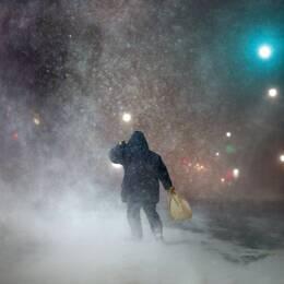 Storm, väder, snöstorm