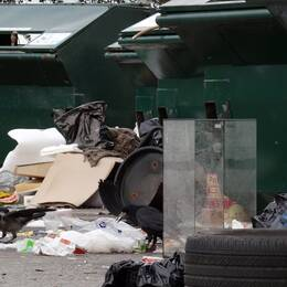 Hushållsavfall återvinns