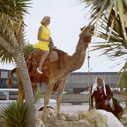 Kamel, och Angered, Göteborg från luften.