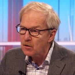 Professor i statsvetenskap Erik Amnå.