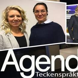 Agenda – teckenspråkstolkat