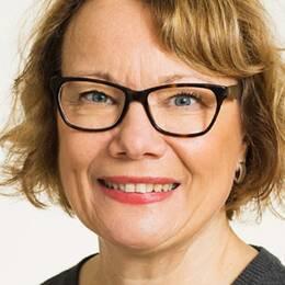Sakkunnig Folkhälsofrågor Svensk sjuksköterskeförening