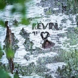 Bröderna var bara 5 och 7 år gamla när polisen pekade ut dem som ansvariga för mordet på 4-årige Kevin. Sedan dess har de levt sina liv i hemlighet. De har aldrig gett sin bild av det som hände. Dan Josefsson berättar hela den gripande historien om ett av Sveriges mest uppmärksammade rättsfall.