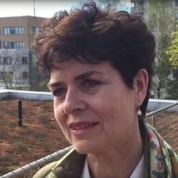 Ullakarin Nyberg