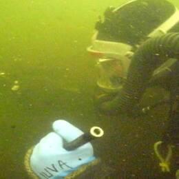Arkivbild dykare i sjön Ala Lombolo i Kiruna