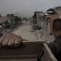 Det är en sakta men kuslig resa när vi rullar med ett irakisk stridsfordon in i Mosuls ruiner. Förödelsen är total.