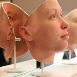 DNA-rekonstruktioner av Chelsea Manning