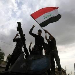 Irakiska soldater firar i Mosul.