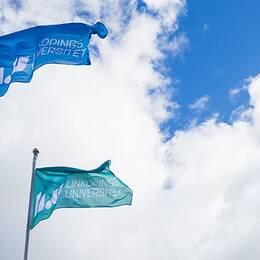 Flaggor med Liu-loggan