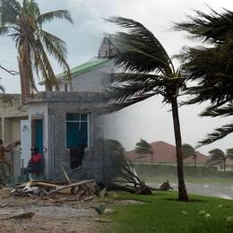 Orkanen Maria växer i styrka
