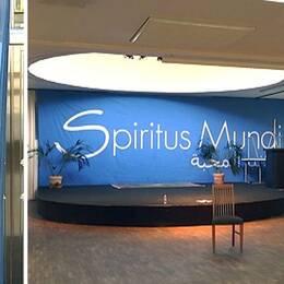 Myndigheten för ungdoms- och civilsamhällesfrågor (MUCF) kräver att SpiritusMundibetalar tillbakanästan en halv miljon kronor.