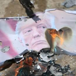 En bild på USA:s president Donald Trump som brinner under dagens protester i Gaza mot USA:s ambassadflytt.