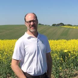 Mattias Hammarstedt är en av Skånes lantbrukare som i år har problem med sina rapsfält.