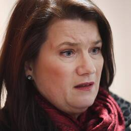 Sveriges EU- och handelsminister Ann Linde (S) upprörs av USA:s stål- och aluminiumtullar.