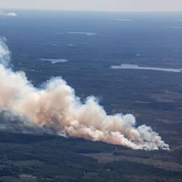 Kraftig skogsbrand vid Rörbo utanför Sala.