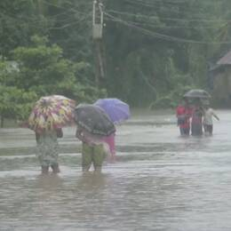 Monsunregn