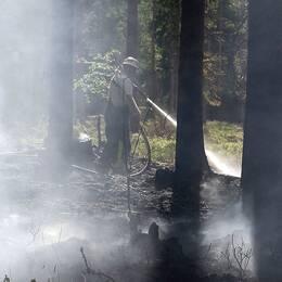 brandman i rykande skog, sprutar vatten
