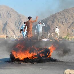 En självmordsattack skakade distriktet Momandara i östra Afghanistan den 11 september. Självmordsbombaren utlöste sin väst mitt i en folkmassa. 25 personer dog och 130 skadades, enligt lokala myndigheter.