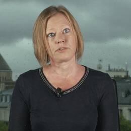 Jenny Andersson, professor i statsvetenskap i Paris.