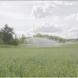 Havsvatten blev en oväntad räddare efter sommarens torka.