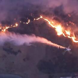 De dramatiska flygbilderna visar det enorma område som täcks av bränder.