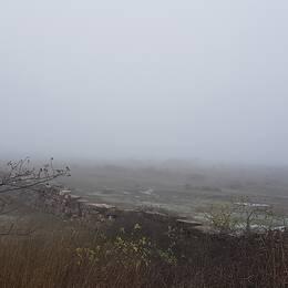 3-D väder på Öland med +7° på Ölands Stora Alvar.