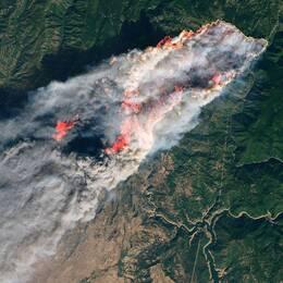 Satellitbilden visar hur enorma skogsområden förtärs av skogsbränder vid staden Paradise i norra Kalifornien.