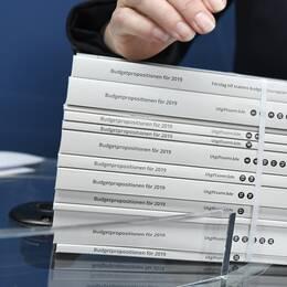 Finansminister Magdalena Andersson (S) presenterar övergångsregeringens budget under en pressträff i Stockholm.