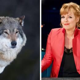 Belinda Olsson hoppas på het debatt i Torsby