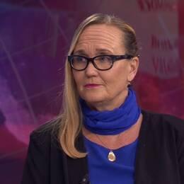 Ingela Hessius tror inte att Högsta domstolen kommer pröva domen mot kulturprofilen Jean-Claude Arnault.