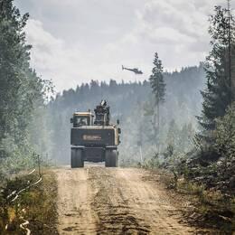 skogsbilväg under släckningsarbete