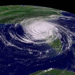 Extrem torka och orkaner hör till de allvarligaste hoten mot världsekonomin enligt WEF