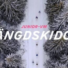 Junior-VM: Längdskidor
