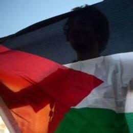 Palestinsk flagga