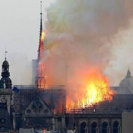 Storbrand i Notre-Dame i Paris