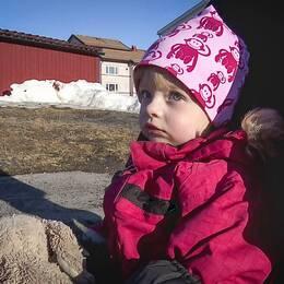 Ruth Lindgren, 2,5 år, stöld av barnvagn