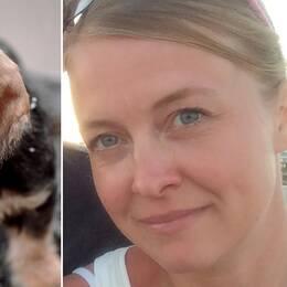 Hundvalp, Elina Åsbjer veterinär och kvalificerad handläggare vid SLU