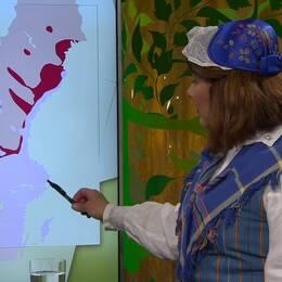 Karin Granberg, läkare i Fråga doktorn, visar fästingarnas utbredningsområde på en Sverigekarta.