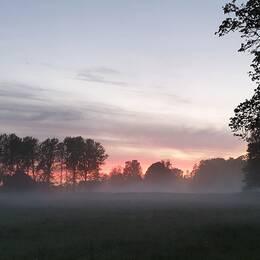 Vacker kvällshimmel och dimma som svävar över ängen. Vallentuna, Uppland.