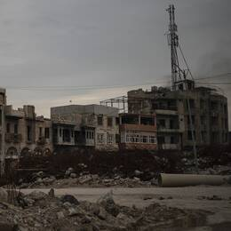Förödelse efter slaget mot Islamiska staten i den irakiska staden Mosul. Den svenska kvinnans make ska ha dödats i Tal Afar nära Mosul. Bilden är tagen i april 2019.