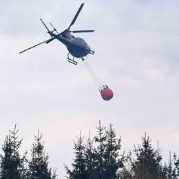 En helikopter vattenbombar brand i Hästveda förra sommaren. Arkivbild.