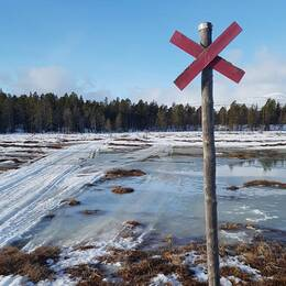 Bild på ledkryss i fjällen där snön har smält bort. Bild på Per-Olov Wikberg, Naturvårdsverket