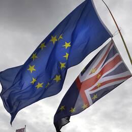 Bild på Nordea som är en av fyra storbanker som tror att brexit kommer att ske med ett avtal mellan EU och Storbritannien. SEB, Handelsbanken och SEB tror dock att avtalet inte kommer att vara på plats innan den 31 oktober då Storbritannien är tänkt att lämna EU.