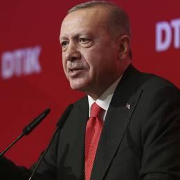 Turkiets president Recep Tayyip Erdogan kommer inte går med på USA:s uppmaning om vapenvilja i norra Syrien.